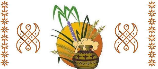 Pongal Recipes and Kolangal