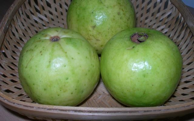 Guava – The Super Fruit
