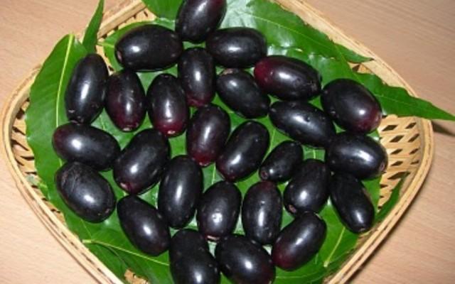 Jamun Fruit (Naaval Pazham)
