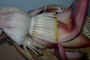 banana-flower-vazhai-poo